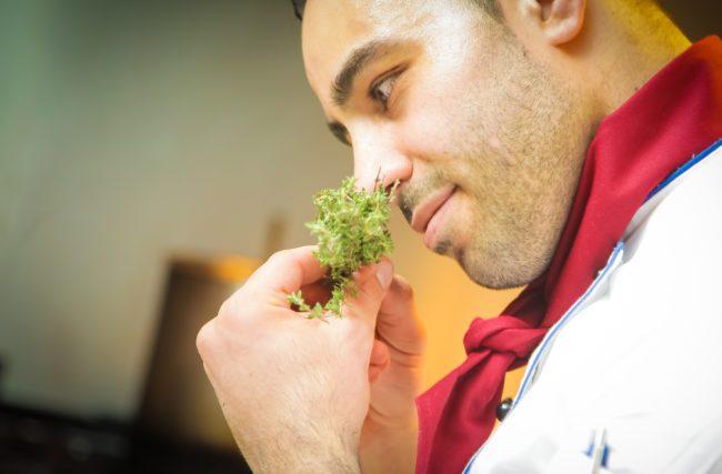 Cultivo Indoor Cannabis Medicinal – Cheiros e Odores
