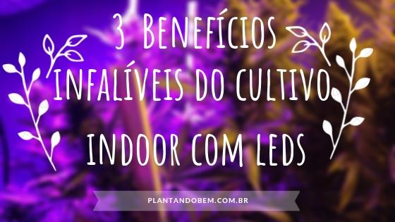 3 Benefícios do CULTIVO INDOOR com LED