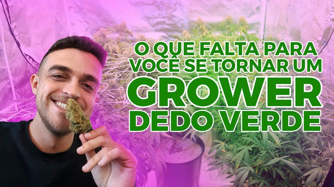 O que falta para você se tornar um grower dedo verde?